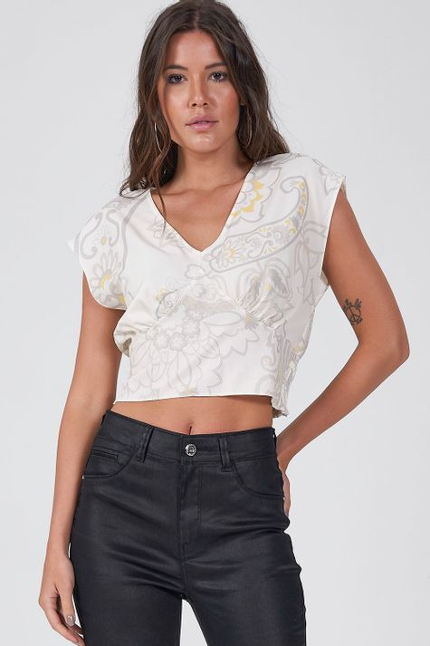 Cropped-Paisley